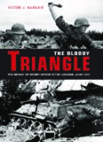 The Bloody Triangle: The Defeat of Soviet Armor in the Ukraine, June 1941