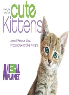 Too Cute Kittens: Animal Planet's Most Impossibly Adorable Kittens