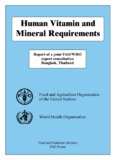 Human Vitamin and Mineral Requirements - Food and Agriculture