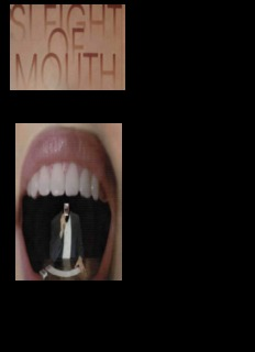 Sleight of Mouth by Robert Dilts