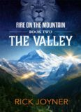 The Valley (Fire on the Mountain Series Book 2)