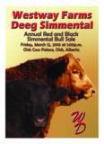 Westway Farms & Deeg Simmentals Bull Sale