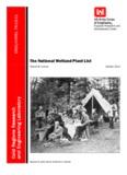 The National Wetland Plant List (2012)