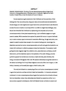 ABSTRACT PEROFF, DEIDRE MARIE. The Role of Tourism Microentrepreneurship and ...