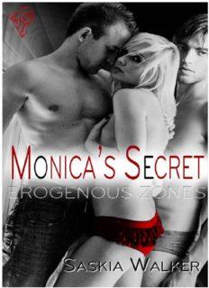 Erogenous Zones: Monica's Secret