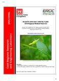 Atlantic and Gulf Coastal Plain 2014 Regional Wetland Plant List