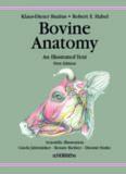 BOVINE ANATOMY An Illustrated Text FIRST EDITION Professor Klaus-Dieter Budras Dr. med. vet ...
