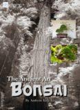The Ancient Art of Bonsai.By Amboru Kato Kimura
