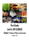 First Grade Unit B: LIFE SCIENCE - Compton Unified School District