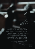 A Brief History of International Criminal Law and International Criminal Court