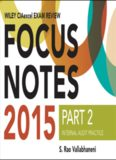 Wiley CIAexcel Exam Review 2015 Focus Notes, Part 2: Internal Audit Practice