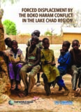 forced displacement by the boko haram conflict in the lake chad region