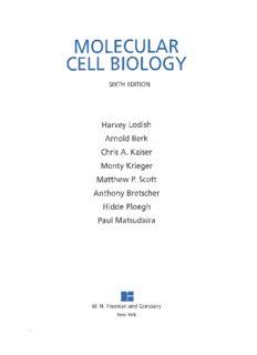 Molecular Cell Biology (Lodish, Sixth Edition)