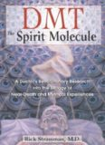 DMT : the spirit molecule : a doctor's revolutionary research into the biology of near-death and mystical experiences