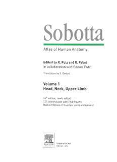 Sobotta - Atlas Huma..