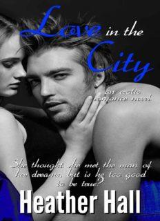 Love in the City, an erotic romance novel