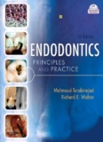 Endodontic Principles and Practice 4th Ed