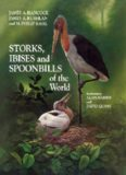 Storks, Ibises, and Spoonbills of the World