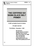 the certified six sigma black belt primer