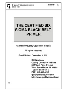 the certified six sigma black belt primer