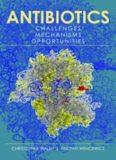 Antibiotics: Challenges, Mechanisms, Opportunities