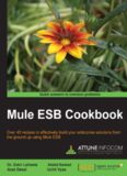 Mule ESB cookbook : over 40 recipes to effectively build your enterprise solutions from the ground