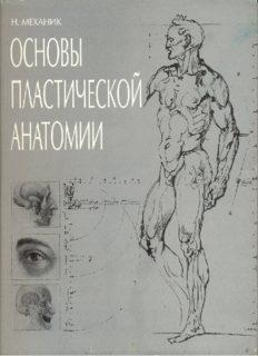 Основы пластической анатомии