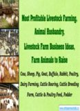 Most Profitable Livestock Farming, Animal Husbandry, Livestock Farm Business Ideas, Farm ...