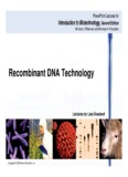 Recombinant DNA Technology - MDC Faculty Home Pages - Miami Dade
