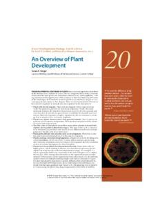 Developmental Biology by Scott F. Gilbert, published by