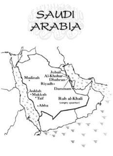 Princess- A True Story of Life Behind the Veil in Saudi Arabia