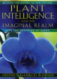 Plant Intelligence and the Imaginal Realm: Beyond the Doors of Perception into the Dreaming