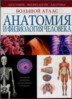 Анатомия и физиология человека  Большой атлас
