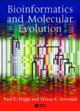 Bioinformatics and Molecular Evolution - EVA