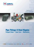 Pipe Fittings & Steel Nipples - Pipe Valve Fitting