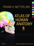 Atlas of Human Anatomy  With Student Consult Access, 5th Edition