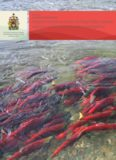Impacts of salmon farms on Fraser River sockeye salmon
