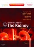 Brenner & Rector's the Kidney, 9th Edition