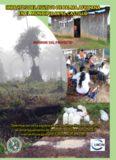impactos del cultivo de palma africana en el municipio de el castillo impactos del cultivo de palma
