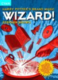 Wizard!: Harry Potter's Brand Magic (Great Brand Stories series)