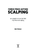 FOREX PRICE ACTION SCALPING - Apiary Fund