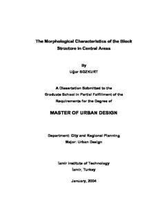 master of urban design