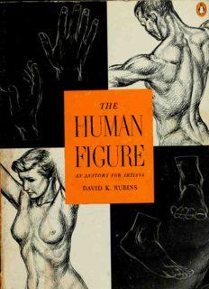 The Human Figure: An Anatomy for Artists