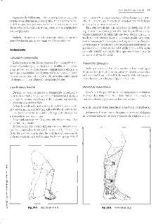 Fisioterapia y rehabilitación en Traumatología Ortopedia y Reumatología
