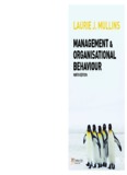 management & organisational behaviour