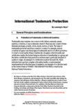 Bryer - International Trademark Protection_06282016