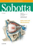 Sobotta Atlas of Anatomy Head, Neck and Neuroanatomy