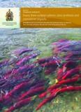 Fraser River sockeye salmon