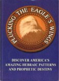 Plucking the eagle's wings : America's prophetic cycles, patterns and destiny