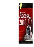 Microsoft Access 2010 Bible